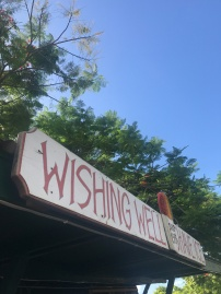Wishing well shaved ice